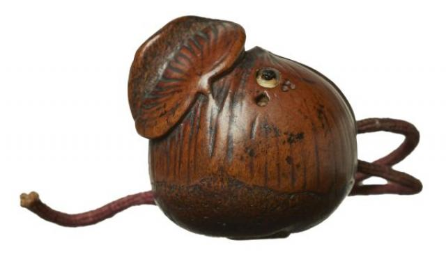 Unsigned - Netsuke - Worm inside chestnut